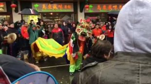 Chinese dragon dancer entertaining the crowds